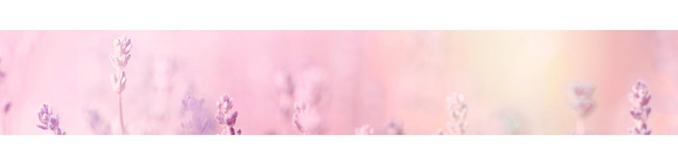 Perfumy 15ml